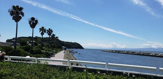 新江ノ島水族館_180819_0003.jpg